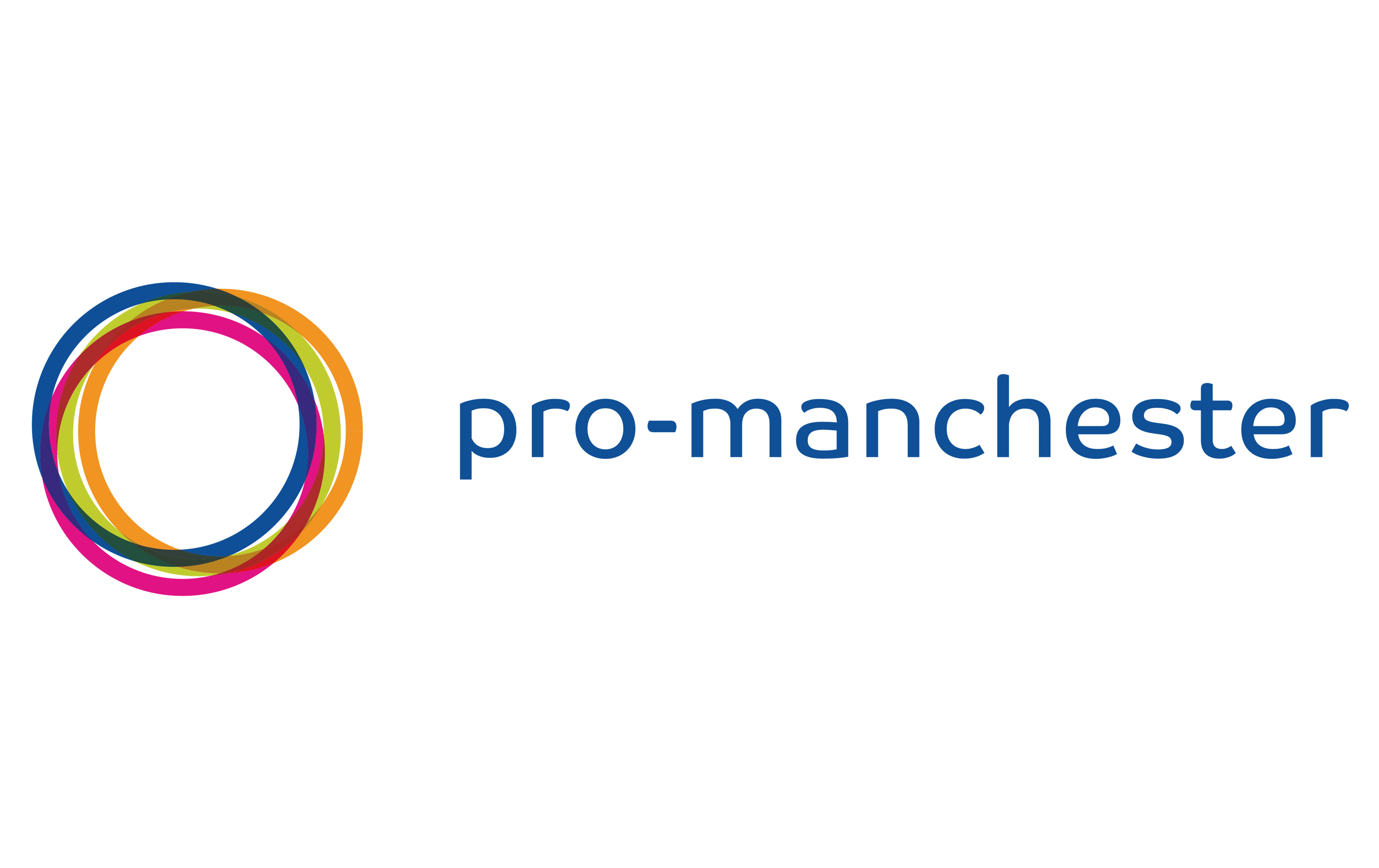 Pro Manchester's Future Pro Committee